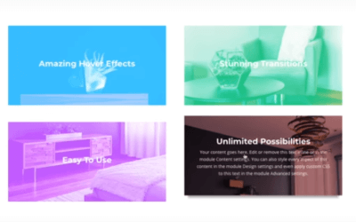 Ny Divi uppdatering – utökade animeringsmöjligheter