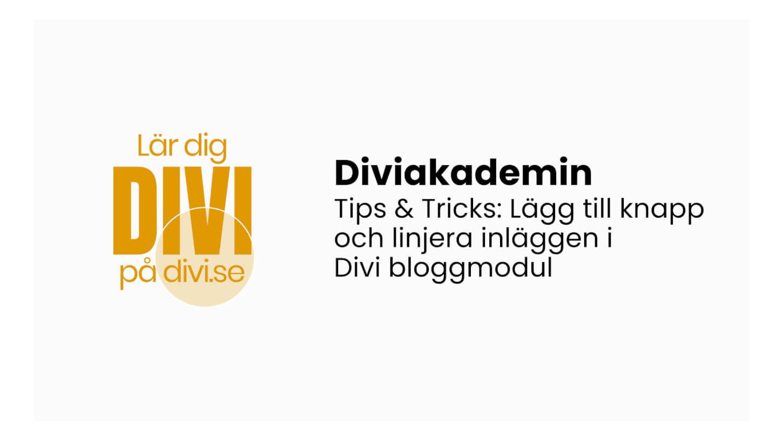 Addera och linjera knappar i Divi bloggmodul